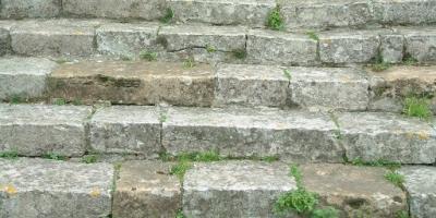 Instrucciones para subir una escalera |Julio Cortázar|