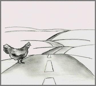 ¿Por qué ha cruzado la carretera el pollo iraquí? |Joshua Paul|