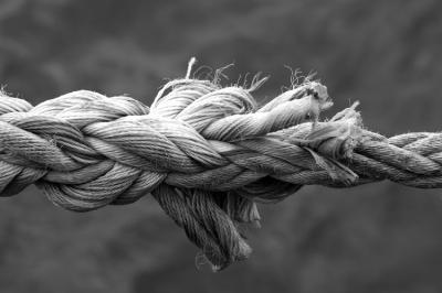 El difícil art de gestionar la incertesa en temps de canvi  Sebastià Serrano  [fragment]